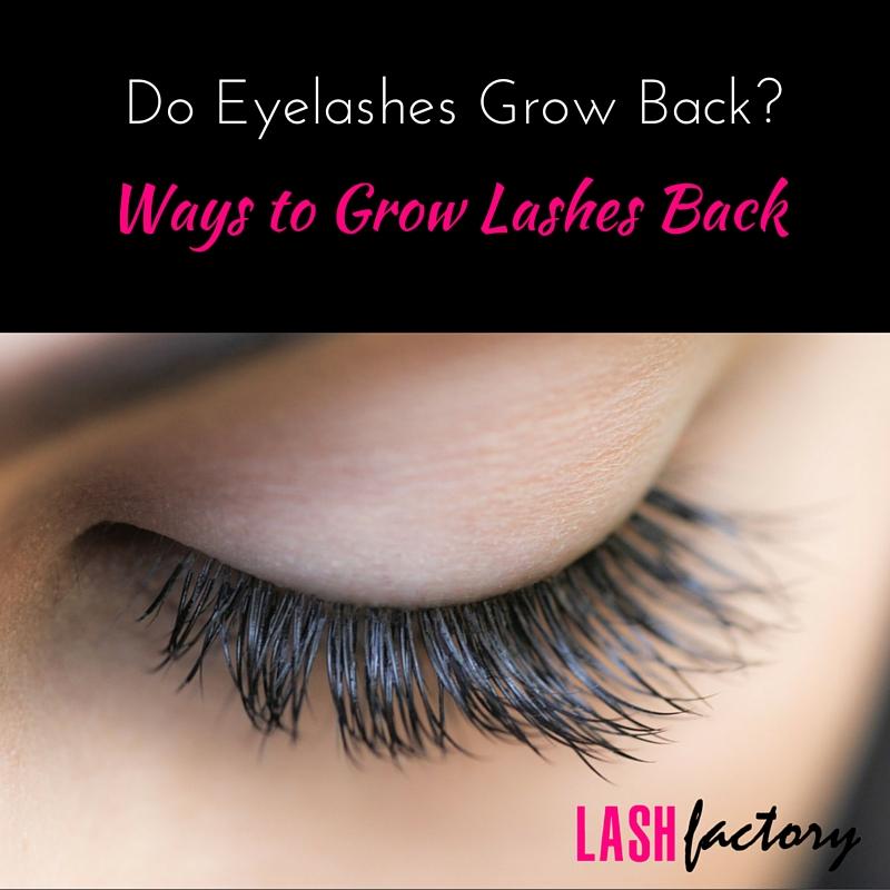 Do Eyelashes Grow Back? Ways to Grow Your Lashes • Lash Factory ...