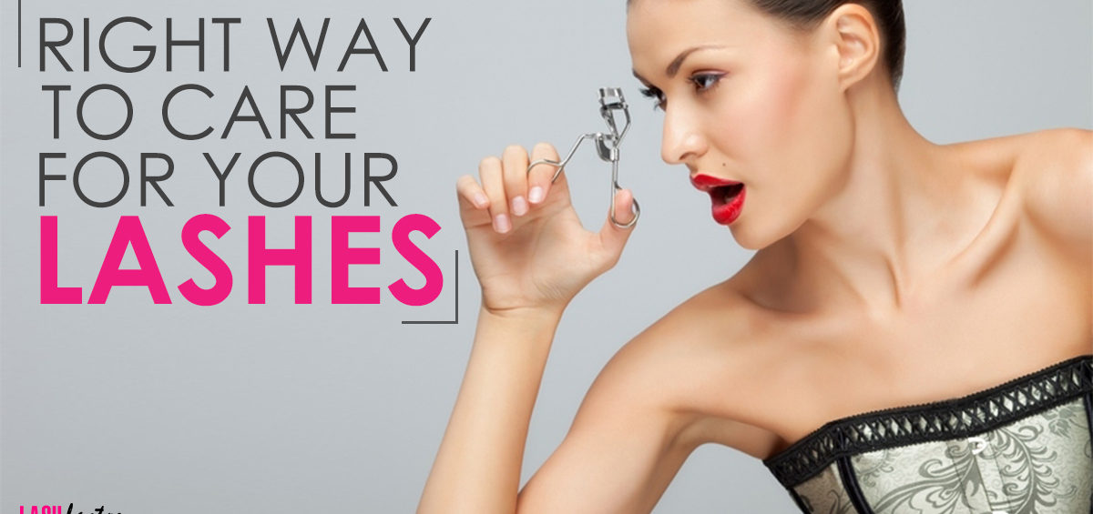 Caring for your lashes lash factory