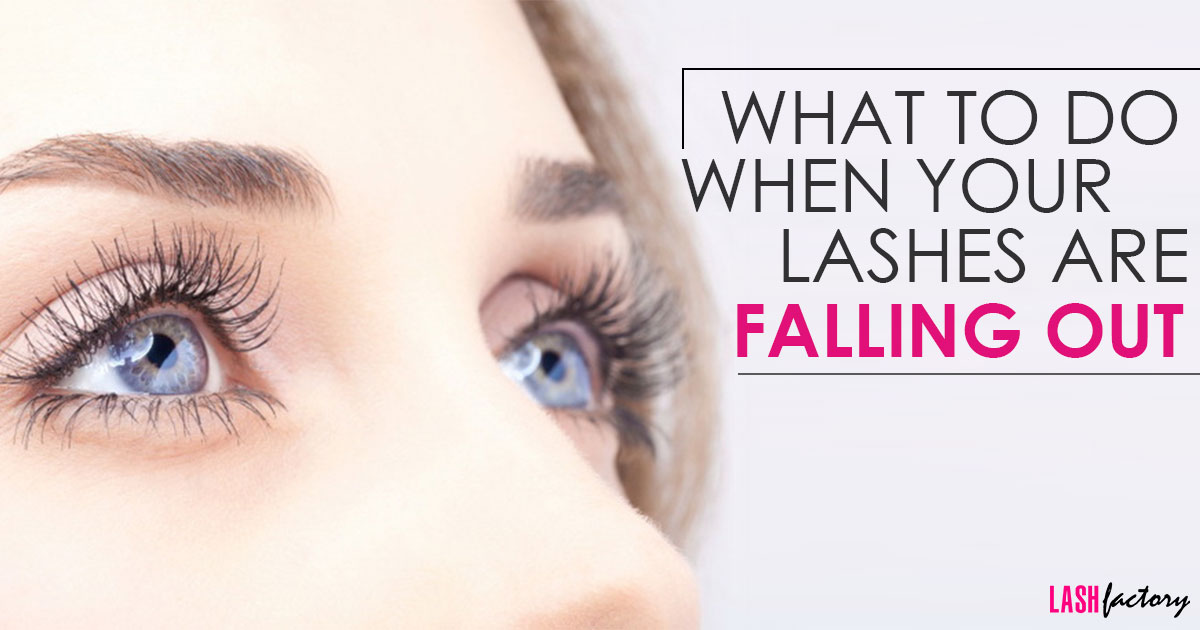 What To Do When Your Lashes Are Falling Out Lash Factory Cosmetics