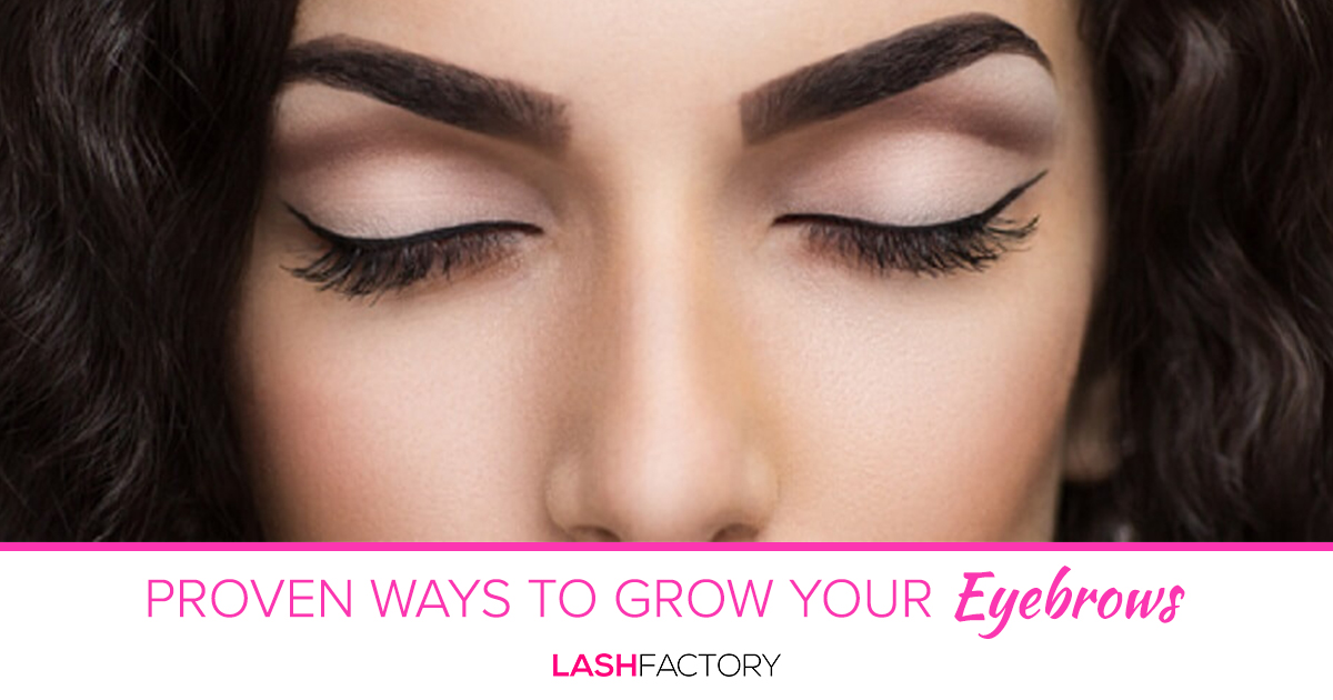 Proven Ways To Grow Your Eyebrows Lash Factory Cosmetics